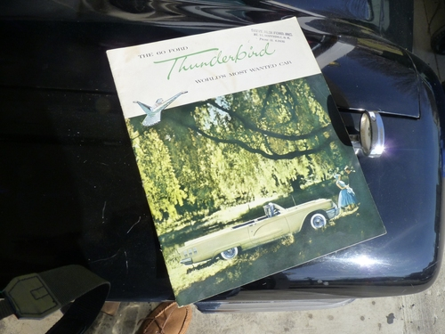 1960 Thunderbird Cover.JPG